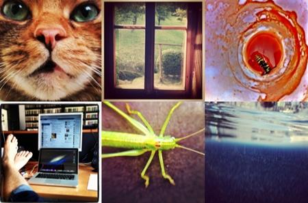Instagram fotky vedle sebe