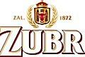 zubr_logo